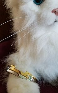 Avon Silver/Gold bracelet